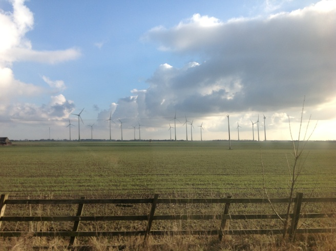 Wind farm from car