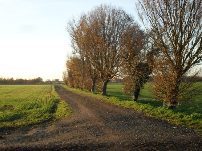 Footpath to Barton