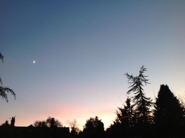 Sunset in the winter garden